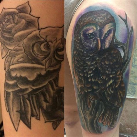altered images tattoos nature animal bird owl cover