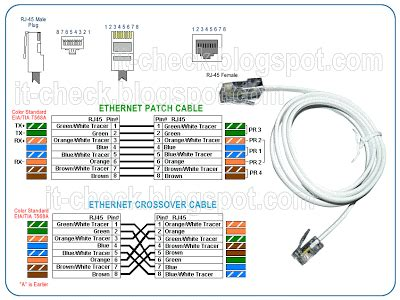 Ethernet Mbitnetwork Cable Wiring Pinout World