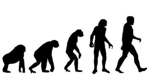 The Next Stage Of Human Evolution  By K Sohail Ravi
