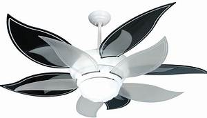 Black ceiling fan with light baby exit