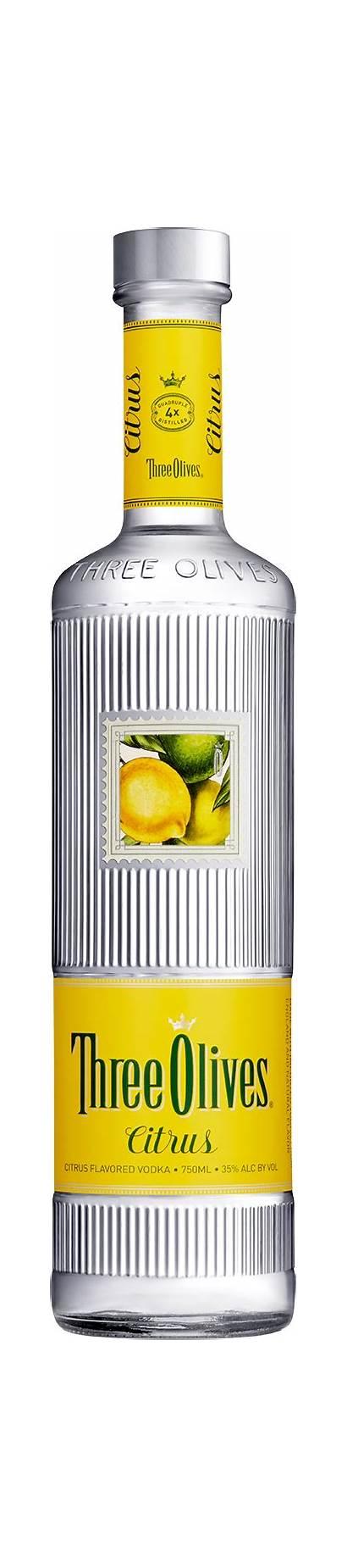 Citrus Olives Three