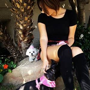 34 best images about scout Taylor Compton on Pinterest ...