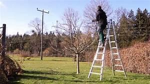 Kirschbaum Richtig Schneiden : apfelbaum richtig schneiden obstbaumschnitt tutorial ~ Lizthompson.info Haus und Dekorationen