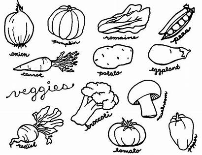 Coloring Vegetable Vegetables Printable Fruits Sayuran Veggies