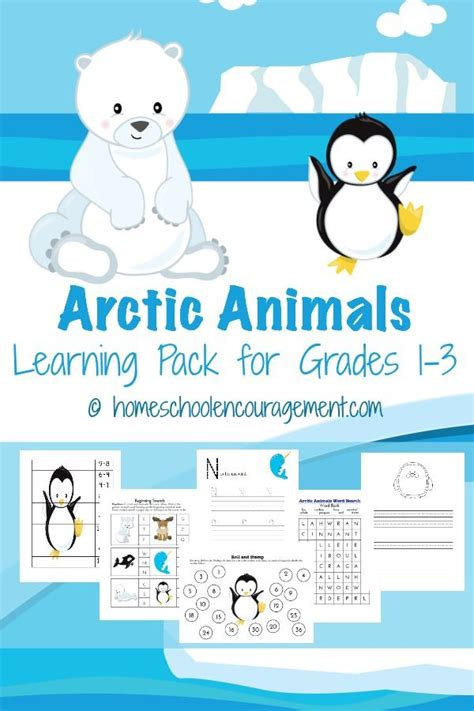 1000 ideas about arctic animals on about 857 | 82f4dd5b2c241278d46b28ce8f988625