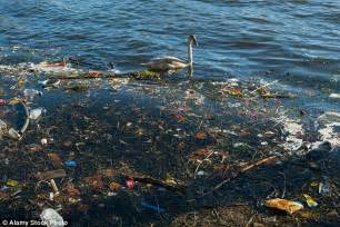The Island of Plastic Waste in an Ocean