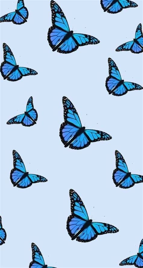 iphone 11 aesthetic blue butterfly wallpaper aesthetic