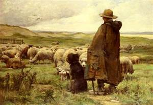 sheep images shepherd with dog and grazing sheep
