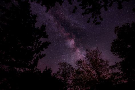 Free Images Tree Nature Cloud Sky Night Star Milky