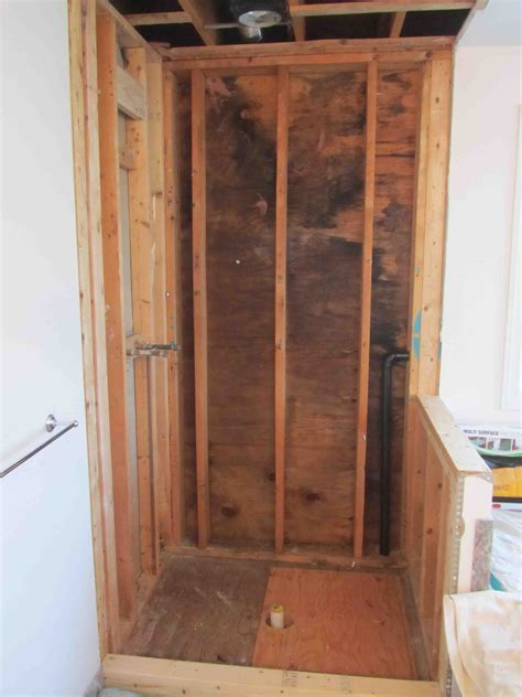Black mold behind shower wall   Pro Construction Forum