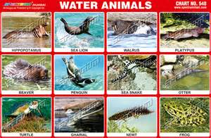 Water Animals Chart with Names