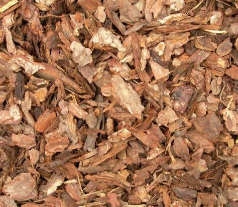 which mulch is best best bark mulch for 28 images mulch matters gardening basics how to apply mulch north
