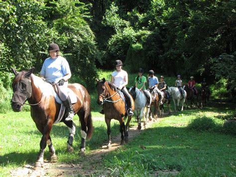 horse riding horseback lessons camp center camps horses columbia near camping pony mileto tripadvisor things