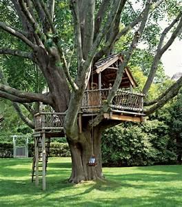 Une Cabane Dans Les Arbres Luxe Nature Et Chic Archzinefr