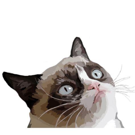 Grumpy Cat No Transparent Png Stickpng