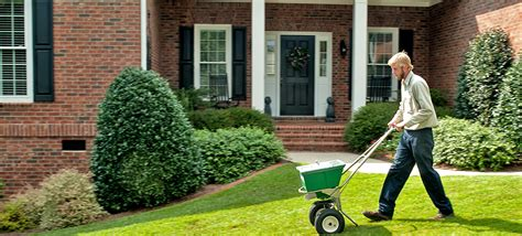 green lawn care in auburn al home garden 334