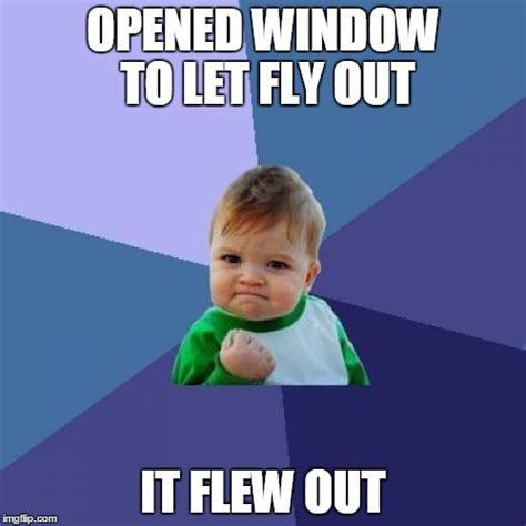 Fly Meme - the boy the fly imgflip