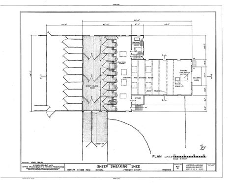 shed layout plans wonderful idea shearing shed design plans