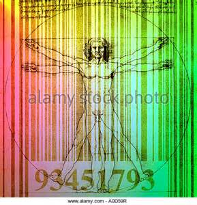 Vitruvian Man DaVinci Code