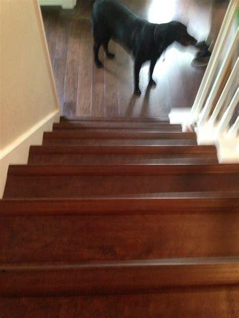 bull nose hardwood pieces  stairs raised  flush