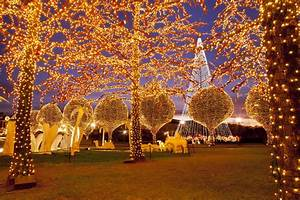 Where, To, See, Christmas, Lights, In, Nashville