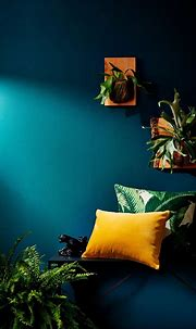 Shop the Trend: Tropical Decor   Tropical home decor ...