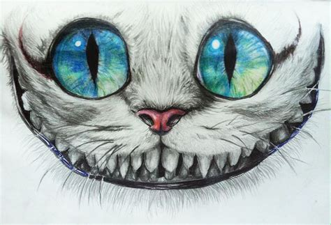 cheshire cat drawing ideas  pinterest