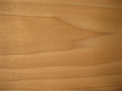 poplar wood this is a scan of some of the poplar wood used for the fuzukue project