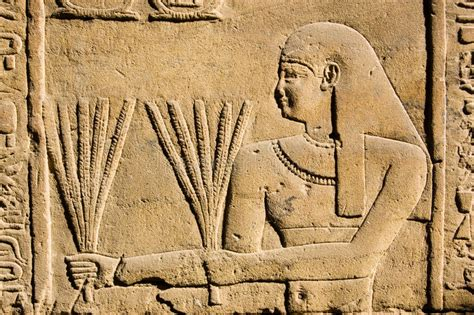Ancient Egyptian Priest With Wheat Royalty Free Stock