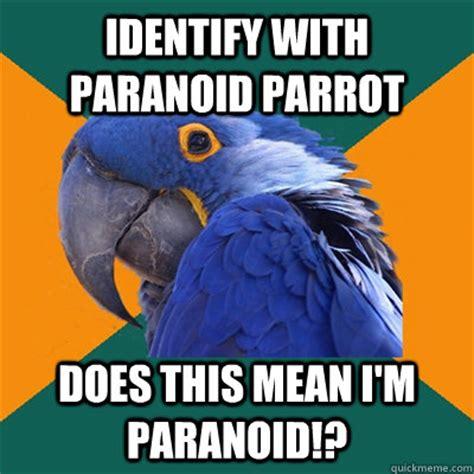 Paranoid Parrot Meme - identify with paranoid parrot does this mean i m paranoid paranoid parrot quickmeme