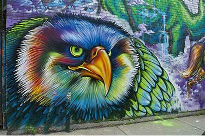 Graffiti Bird Psychedelic Eagle Wall Wallpapers Miscellaneous