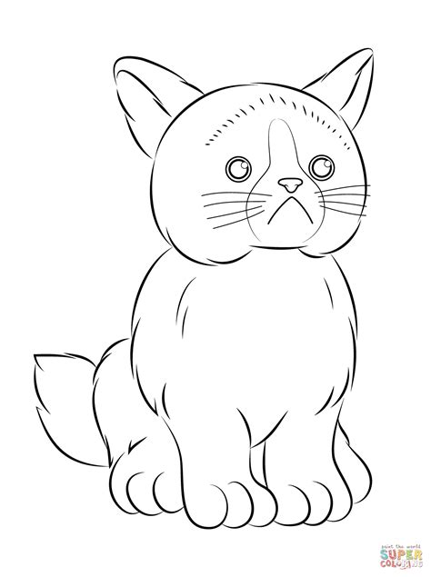 webkinz grumpy cat coloring page  printable coloring pages