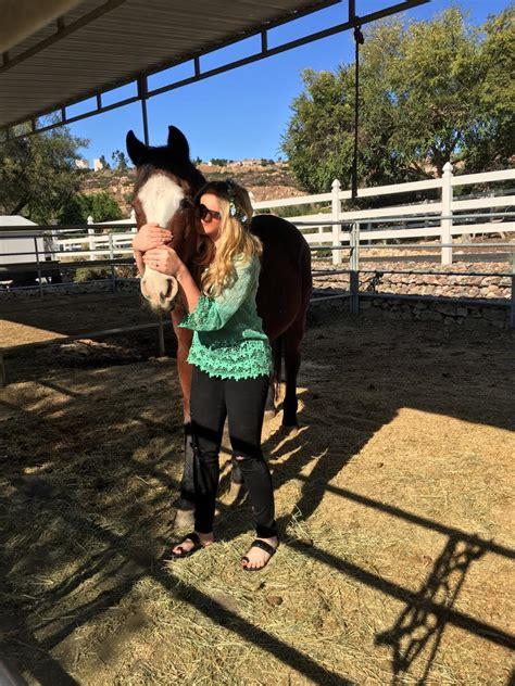 laminitis horses pain horse relieve treatment meet friend