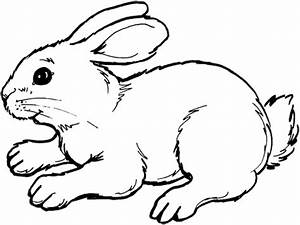 amazing bunny printable coloring pages coloring With click image for larger versionnamewiring diagramjpgviews8size1516