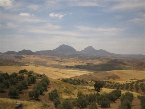 southern spanish countryside photo