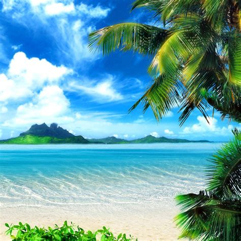Tropical Beach Screensavers And Wallpaper