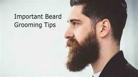 Bearded Shedding Tips by Beard Grooming Guide For Those Who To Follow The