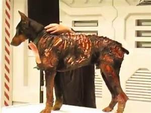 Perro ZOMBIE Residel Evil: Afterlife - YouTube