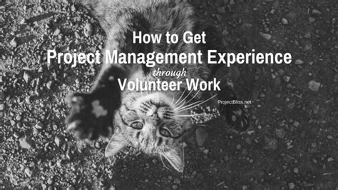 Project Management Experience Exles by How To Get Project Management Experience Through Volunteer