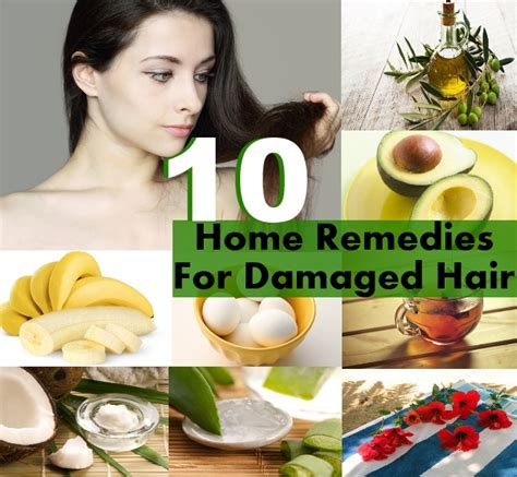 home remedies for damaged hair top 10 home remedies for damaged hair diy home things