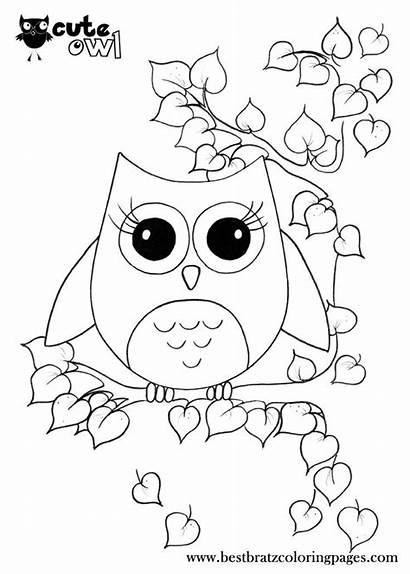 Coloring Pages Owl Sheets Bratz Printable Colouring