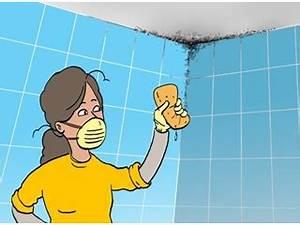 bricolage enlever et prevenir la moisissure dans la With nettoyer la moisissure dans la salle de bain