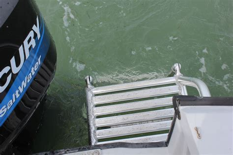 Boston Whaler Boat Ladder by Boat Rentals Marathon Fl Unsinkable Affordable
