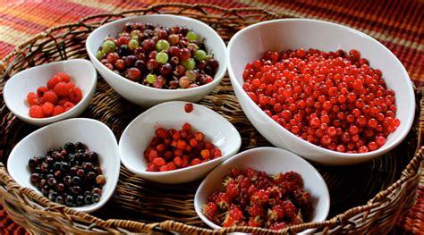 Україна збільшує експорт плодово ягідних продуктів