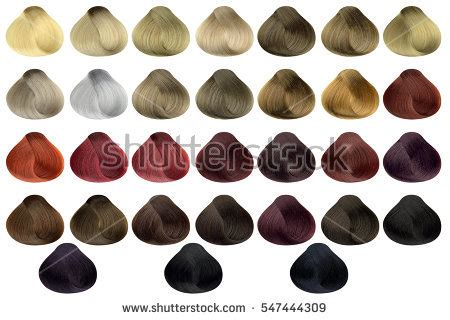All Hair Colors by Hair Colors Palette Hair Colours Set Tints Dyed Hair