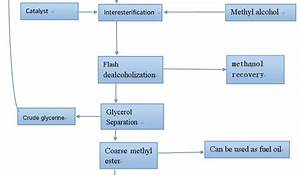 Biodiesel Production Processing Flow Chart