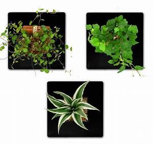 Tableau Végétal Mural : tableau v g tal mural sofag ~ Premium-room.com Idées de Décoration