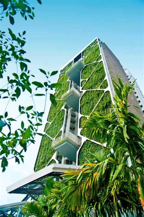 Green Architecture In Bangalore A Way Of Designing Eco