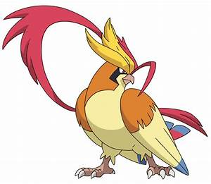 mega pidgeot pokemon xy evolutions images