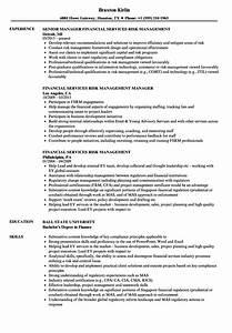 financial services risk management resume samples velvet With career management resume services
